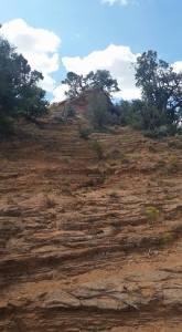 Navajo 7